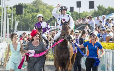 A breeding dream for Queensland's Fletcher family